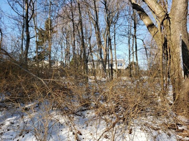 0 Lakeview Dr, West Milford Twp., NJ 07480 (MLS #3528645) :: William Raveis Baer & McIntosh