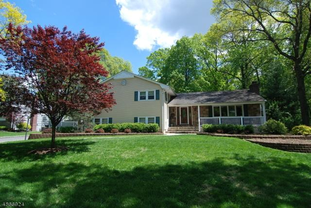 43 Hunterdon Blvd, Berkeley Heights Twp., NJ 07974 (MLS #3528660) :: The Sue Adler Team