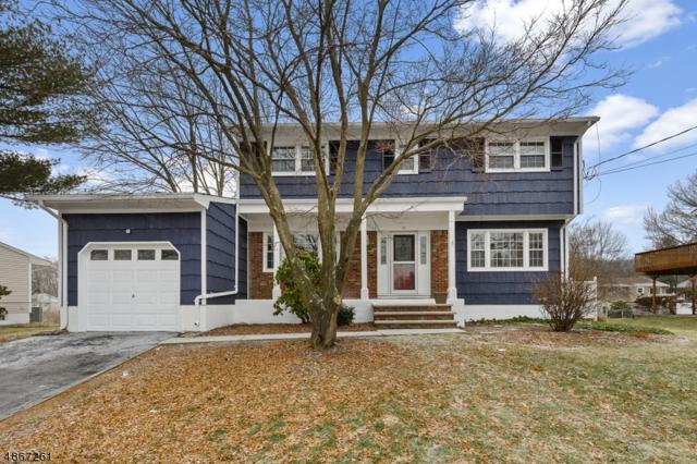 19 Ledgewood Rd, Mount Olive Twp., NJ 07836 (MLS #3528957) :: Pina Nazario