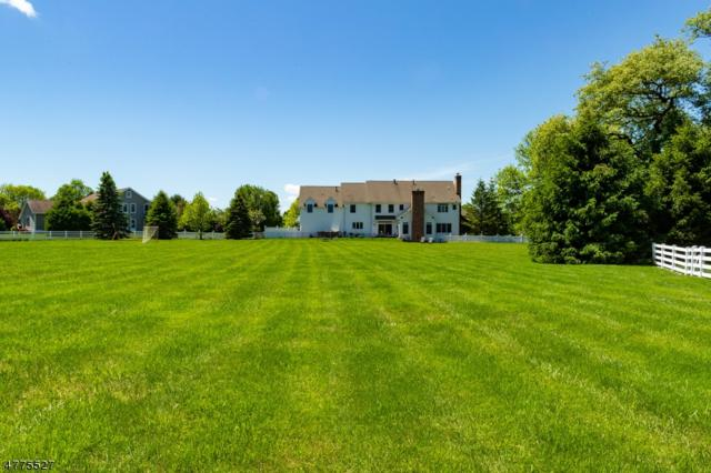 4 Field Ln, Tewksbury Twp., NJ 07830 (MLS #3530195) :: REMAX Platinum