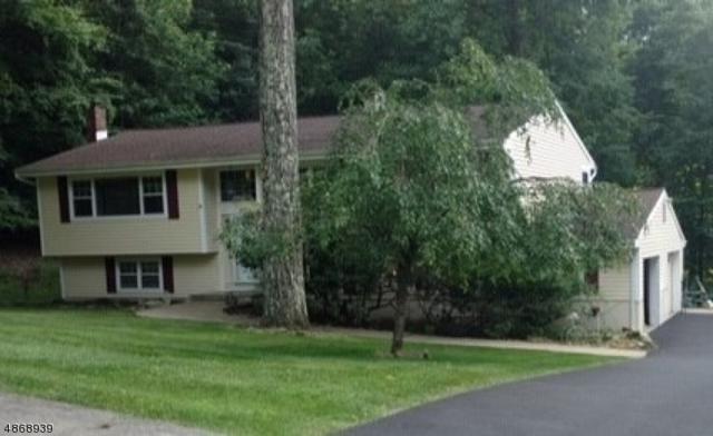 64 Fawnridge Dr, Washington Twp., NJ 07853 (MLS #3530426) :: SR Real Estate Group