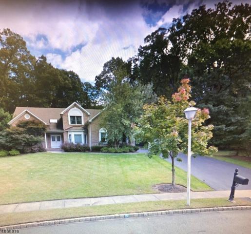 3 Leslie Ann Ct, Denville Twp., NJ 07834 (#3531441) :: Group BK