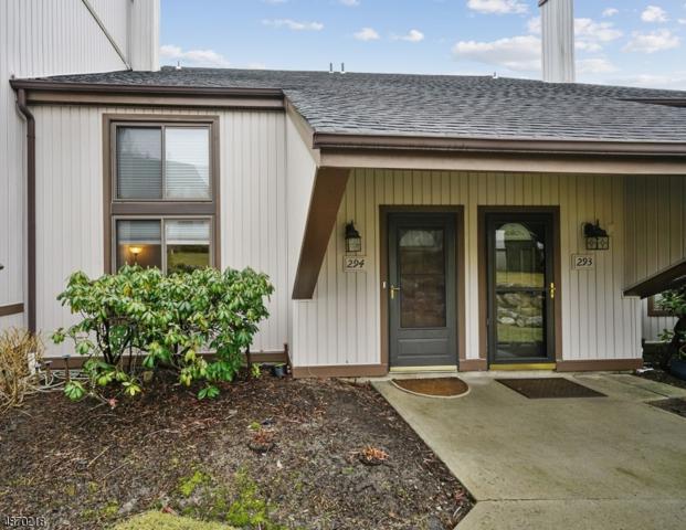 16294 Dell Pl #294, Stanhope Boro, NJ 07874 (MLS #3531514) :: Coldwell Banker Residential Brokerage