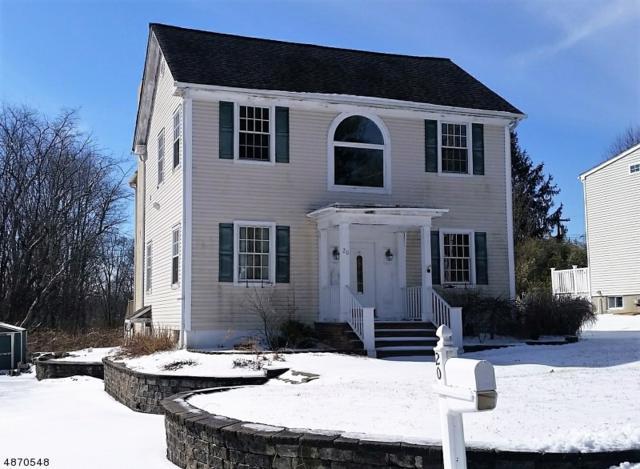 20 Birchwood Rd, Randolph Twp., NJ 07869 (MLS #3531791) :: The Douglas Tucker Real Estate Team LLC
