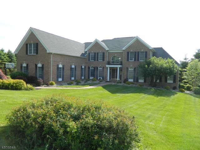 16 Middlesworth Farm Rd, Washington Twp., NJ 07853 (MLS #3532188) :: REMAX Platinum