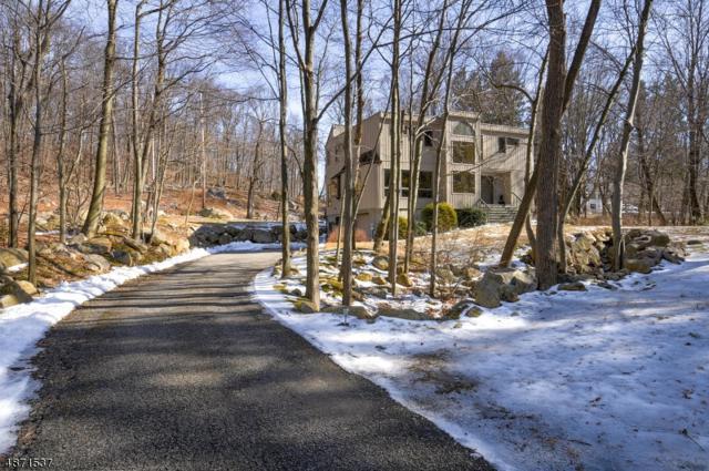15 Boonton Ave, Montville Twp., NJ 07005 (MLS #3532705) :: SR Real Estate Group