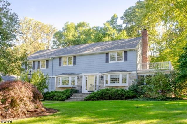 102 Fairfield Dr, Millburn Twp., NJ 07078 (MLS #3533057) :: SR Real Estate Group