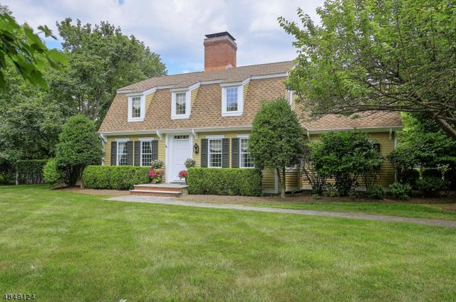 1 Sugar Maple Row, Chester Twp., NJ 07930 (MLS #3534299) :: Coldwell Banker Residential Brokerage