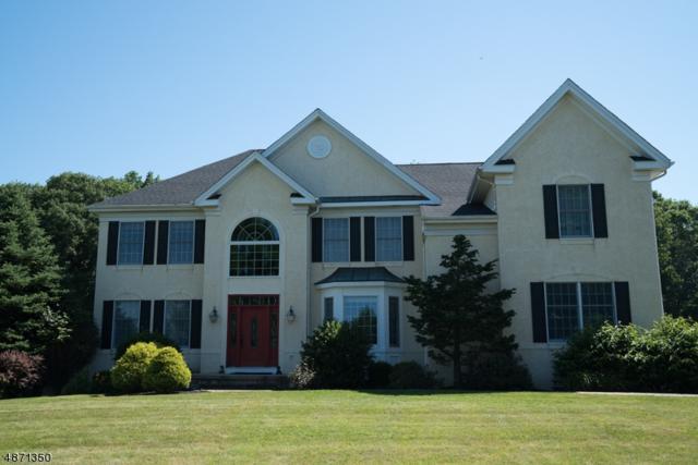 6 Pheasant Drive, Raritan Twp., NJ 08551 (MLS #3535397) :: REMAX Platinum