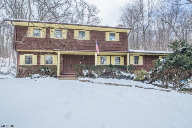 84 Parks Rd, Denville Twp., NJ 07834 (#3535447) :: Group BK