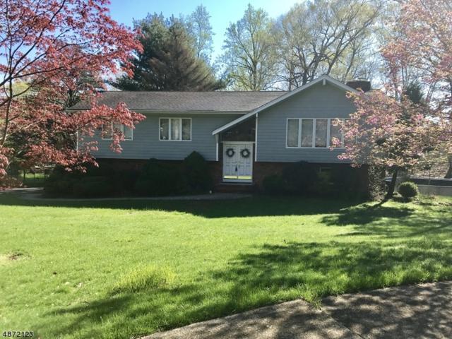 15 Jean Drive, Montville Twp., NJ 07082 (MLS #3536582) :: William Raveis Baer & McIntosh