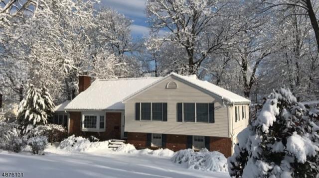 16 Deerfield Rd, New Providence Boro, NJ 07974 (MLS #3537158) :: The Sue Adler Team