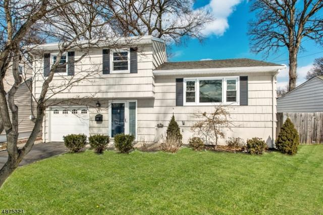 674 Trenton, Kenilworth Boro, NJ 07033 (MLS #3537169) :: The Dekanski Home Selling Team