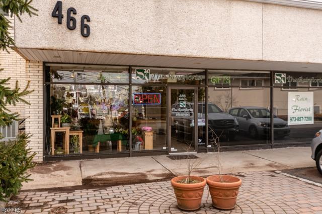 466 Pompton Avenue, Cedar Grove Twp., NJ 07009 (MLS #3538334) :: Coldwell Banker Residential Brokerage