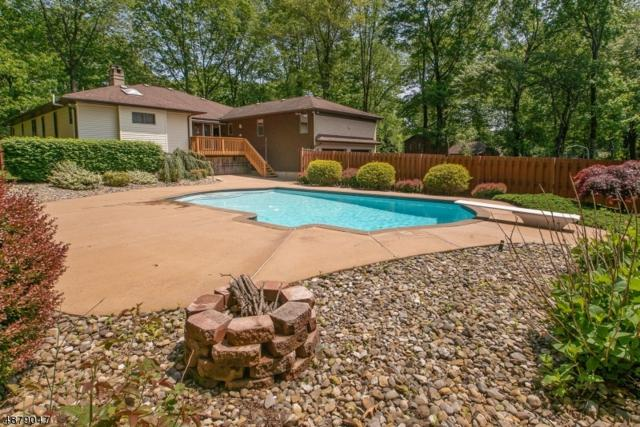 18 Tammy Hill Trl, Randolph Twp., NJ 07869 (MLS #3539611) :: REMAX Platinum