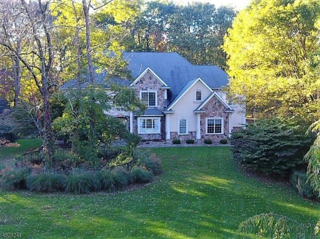 91 Lambert Dr, Sparta Twp., NJ 07871 (MLS #3539725) :: Coldwell Banker Residential Brokerage