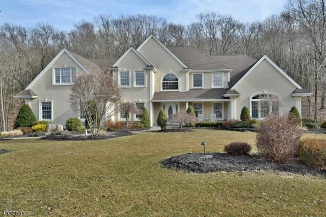 8 Caitlin Ct, Kinnelon Boro, NJ 07405 (MLS #3542286) :: Coldwell Banker Residential Brokerage