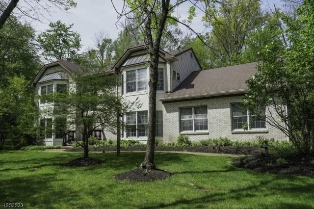 1 Hunters Run, Franklin Twp., NJ 08540 (MLS #3544371) :: Pina Nazario