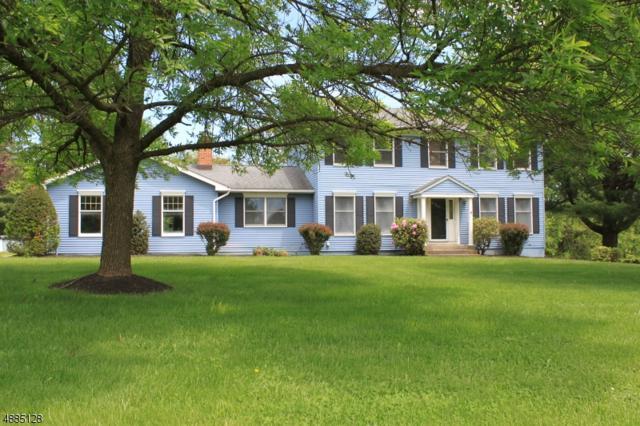 10 Arbor Dr, Washington Twp., NJ 07882 (MLS #3545094) :: REMAX Platinum