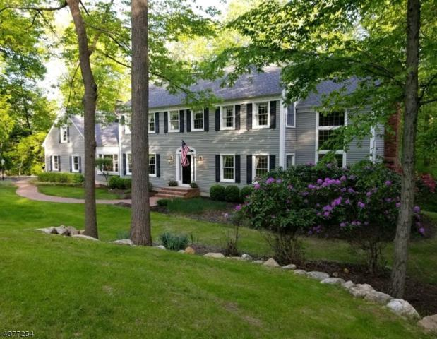 31 Big Spring Rd, Tewksbury Twp., NJ 07830 (MLS #3545242) :: Pina Nazario