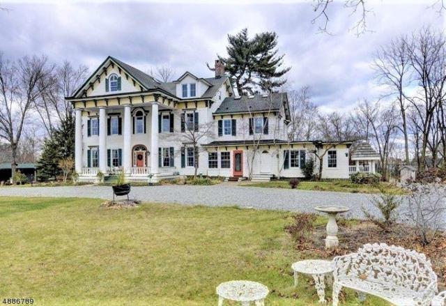 385 Homestead Rd, Hillsborough Twp., NJ 08844 (MLS #3546592) :: The Sue Adler Team
