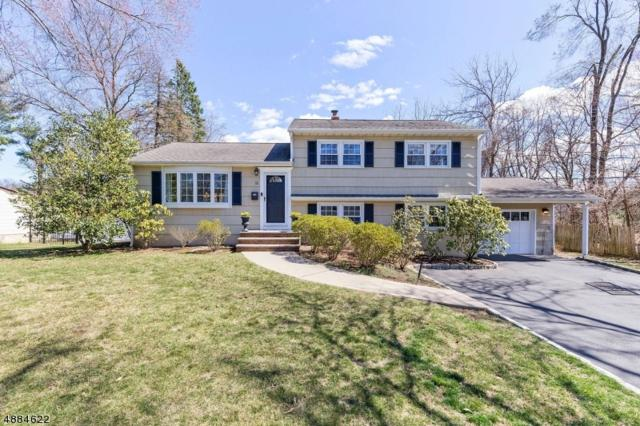 12 Forest Dr, Florham Park Boro, NJ 07932 (MLS #3546867) :: SR Real Estate Group