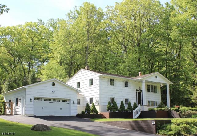 66 Sleepy Hollow Rd, Byram Twp., NJ 07821 (MLS #3547402) :: The Debbie Woerner Team