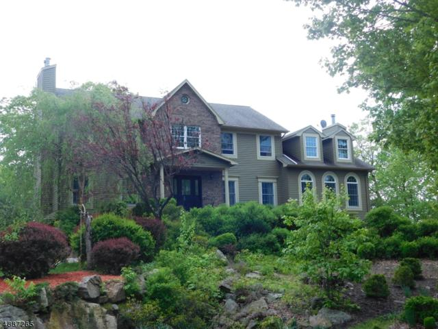 3 Huckleberry Ct, Kinnelon Boro, NJ 07405 (MLS #3547419) :: REMAX Platinum
