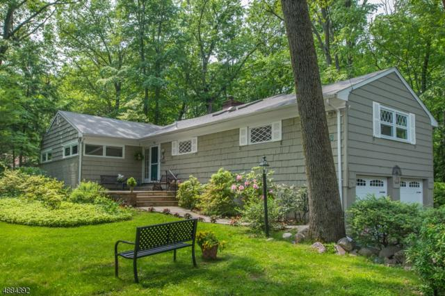 53 Crestview Rd, Mountain Lakes Boro, NJ 07046 (MLS #3548119) :: REMAX Platinum
