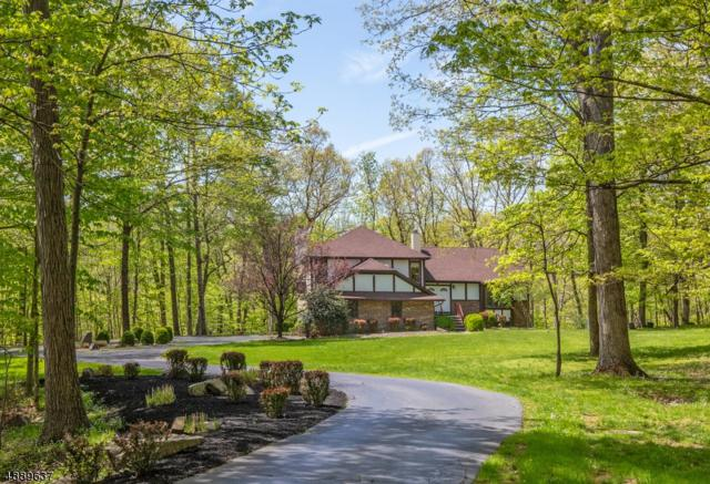 85 Pine Hill Rd, Delaware Twp., NJ 08559 (MLS #3549272) :: Team Francesco/Christie's International Real Estate