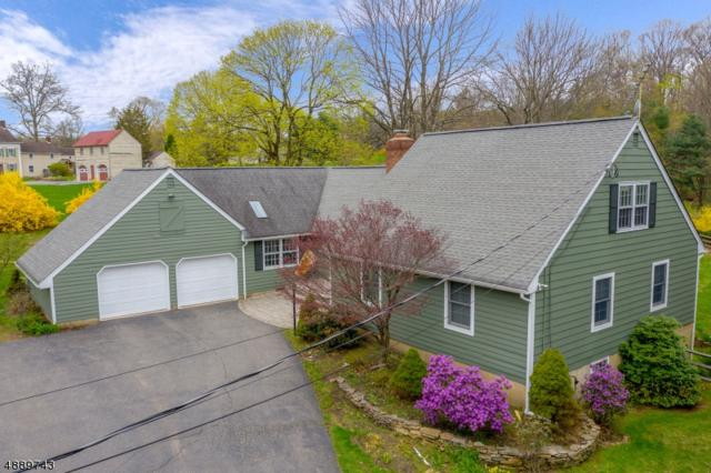 703 County Road 625, Union Twp., NJ 08827 (#3549338) :: Daunno Realty Services, LLC