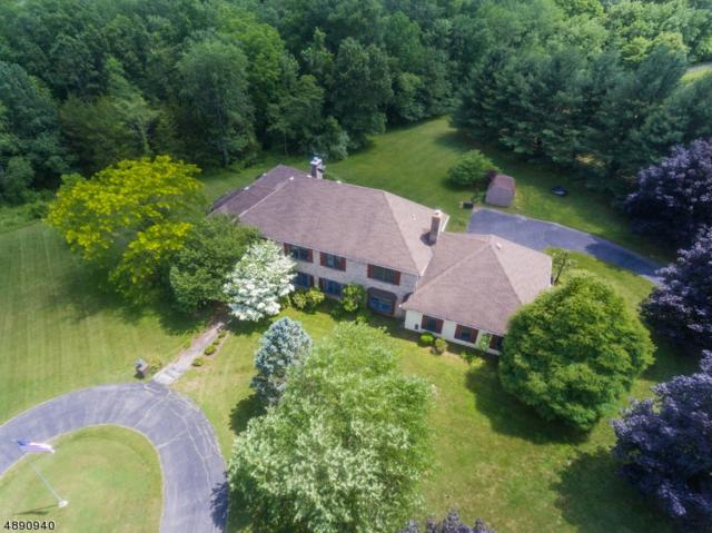 1709 County Rd 519, Alexandria Twp., NJ 08867 (MLS #3550477) :: Weichert Realtors