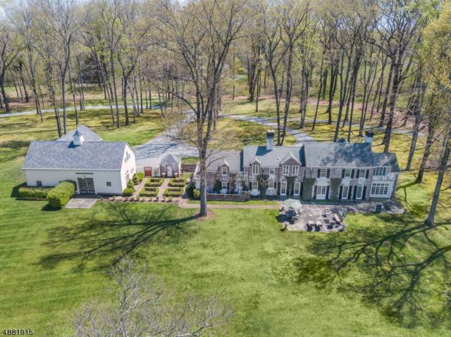 546 Van Beuren Rd, Harding Twp., NJ 07976 (MLS #3550814) :: The Dekanski Home Selling Team