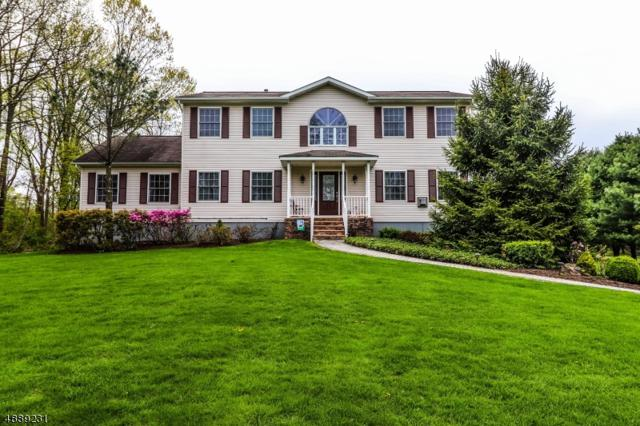 1 Symonds Ln, Lebanon Twp., NJ 08826 (#3552550) :: Group BK