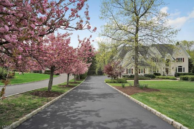 27 Broadway Road, Warren Twp., NJ 07059 (MLS #3553635) :: REMAX Platinum