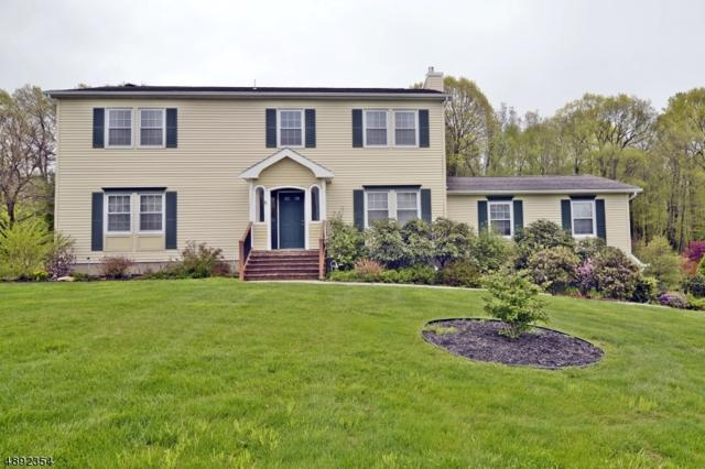 59 Highland Rd, Independence Twp., NJ 07840 (MLS #3553986) :: The Sue Adler Team