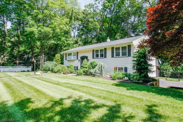 72 Fayson Lakes Rd, Kinnelon Boro, NJ 07405 (MLS #3556799) :: REMAX Platinum