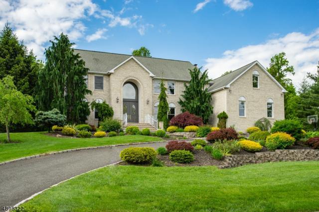 20 Cedar Hollow Dr, Long Hill Twp., NJ 07980 (MLS #3557535) :: REMAX Platinum