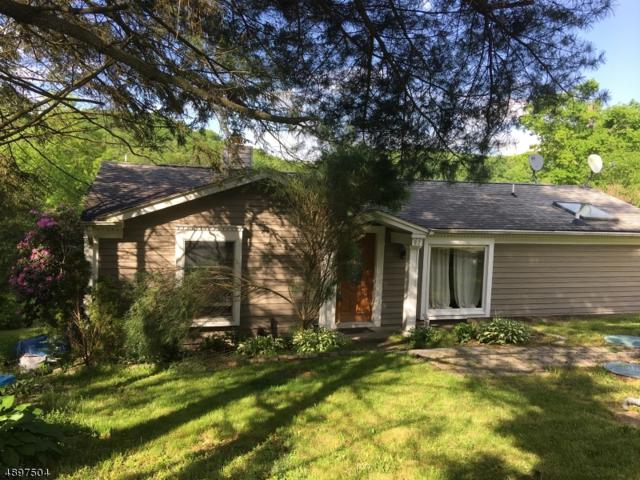 97 S Shore Dr, Wantage Twp., NJ 07461 (MLS #3558715) :: Coldwell Banker Residential Brokerage