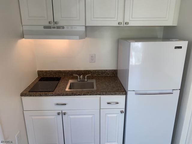 17 Patterson St B1, Newark City, NJ 07105 (MLS #3559332) :: The Dekanski Home Selling Team