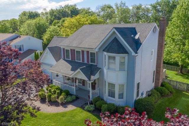5 Fawn Run, Bloomsbury Boro, NJ 08804 (MLS #3559407) :: SR Real Estate Group