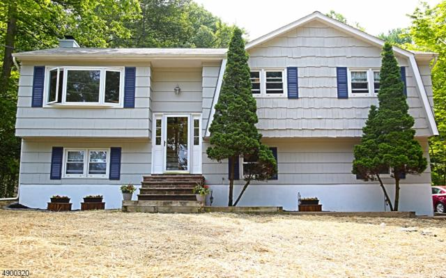 20 Lake View Dr, Byram Twp., NJ 07821 (MLS #3560520) :: Weichert Realtors