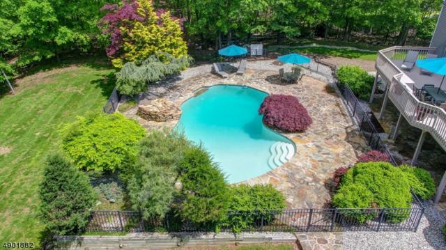 608 Emerald Trl, Bridgewater Twp., NJ 08807 (MLS #3560919) :: The Dekanski Home Selling Team