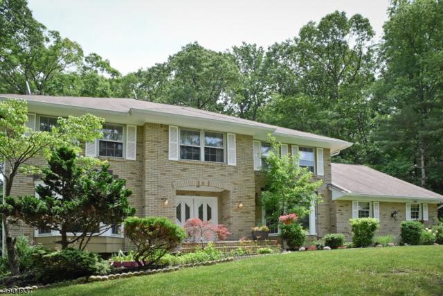 3 Granada Dr, Parsippany-Troy Hills Twp., NJ 07950 (MLS #3560921) :: REMAX Platinum