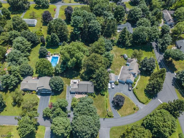 4 Terrace Road, Boonton Twp., NJ 07005 (MLS #3562906) :: The Sue Adler Team