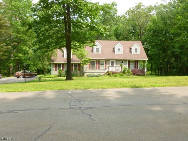 15 Minisink Dr, Montague Twp., NJ 07827 (MLS #3564651) :: William Raveis Baer & McIntosh