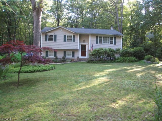 15 Budd Lake Heights Rd, Mount Olive Twp., NJ 07828 (MLS #3565058) :: Mary K. Sheeran Team