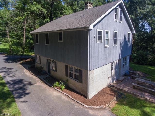 3 Hillside Ter, Bethlehem Twp., NJ 08827 (MLS #3565232) :: SR Real Estate Group