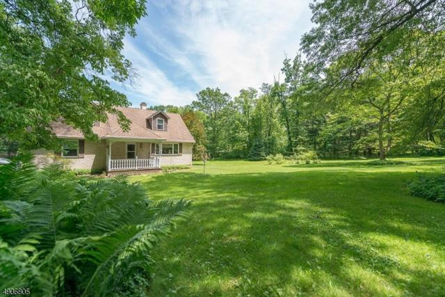 78 Route 519, Pohatcong Twp., NJ 08865 (MLS #3565465) :: SR Real Estate Group