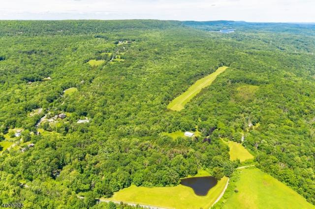 65 Wishing Well Rd, Knowlton Twp., NJ 07832 (MLS #3565584) :: The Karen W. Peters Group at Coldwell Banker Realty